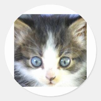 Ojos azules pegatina redonda