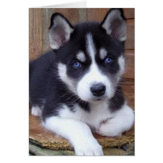 Ojos azules tarjeta pequeña
