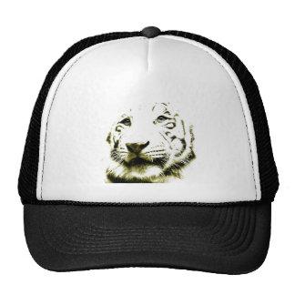 Ojos azules, tigre blanco gorros