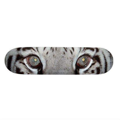Ojos blancos del tigre patin