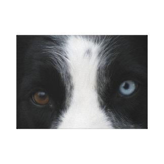 Ojos brillantes del perrito lona envuelta para galerías