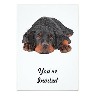 """Ojos coloreados del perrito de Rottweiler del Invitación 5"""" X 7"""""""