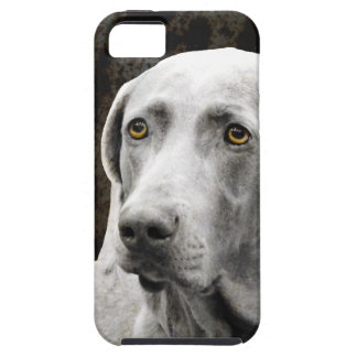 Ojos conmovedores del Weimaraner iPhone 5 Case-Mate Protectores