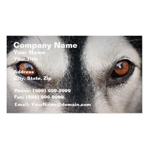 Ojos de Brown del perro del Malamute Tarjetas De Visita