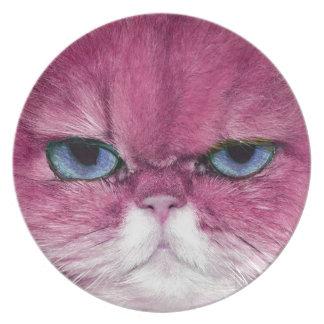 OJOS DE CAT FEROCES ROSADOS DE LA MIRADA DEL CAT, PLATO PARA FIESTA