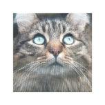 Ojos de gato 1 impresiones en lienzo estiradas