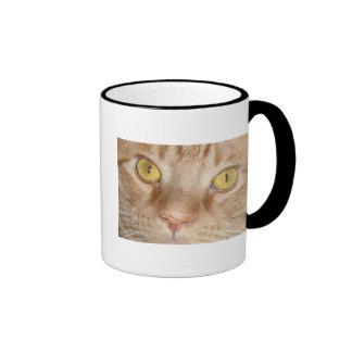 Ojos de gato anaranjados de Tabby Taza De Dos Colores