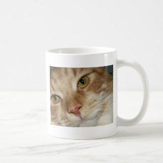 Ojos de gato anaranjados taza