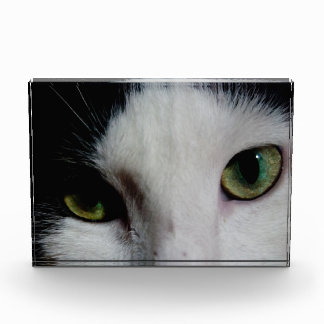 Ojos de gato (fotográficos)