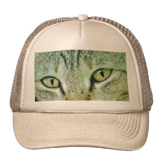 ojos de gato gorro de camionero