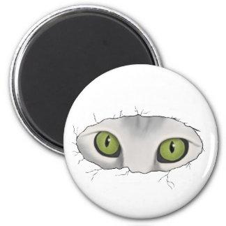 ojos de gato imán redondo 5 cm