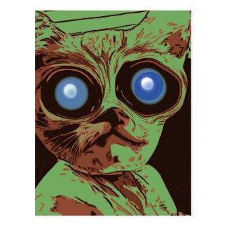 Ojos de gato locos postal
