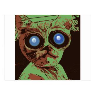 Ojos de gato locos tarjeta postal
