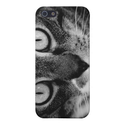 Ojos de gatos… Iphone que cautiva iPhone 5 Coberturas