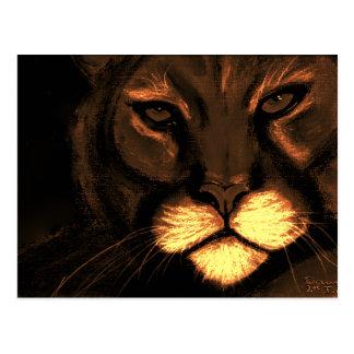 ojos de gatos postal
