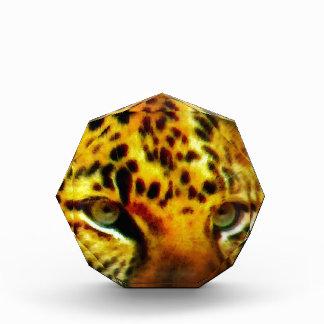 Ojos de Jaguar