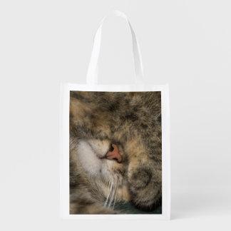 Ojos de la cubierta del gato de casa mientras que bolsa de la compra