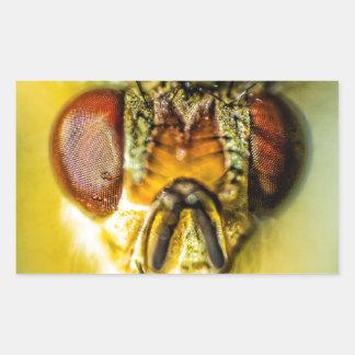 Ojos de la mosca - encima de cercano y de personal rectangular pegatina
