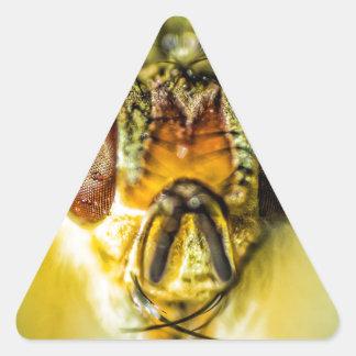 Ojos de la mosca - encima de cercano y de personal pegatina de triangulo