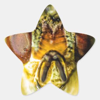 Ojos de la mosca - encima de cercano y de personal calcomania forma de estrella personalizadas
