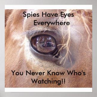 Ojos de los espías póster