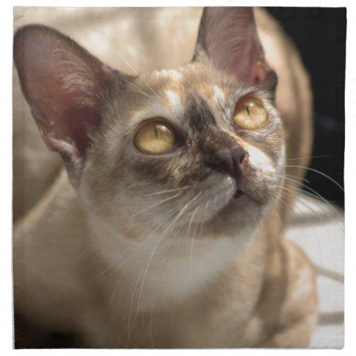Ojos de oro servilletas imprimidas