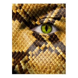 Ojos de serpiente tarjetas postales
