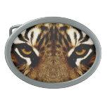 Ojos de un tigre hebilla de cinturon oval