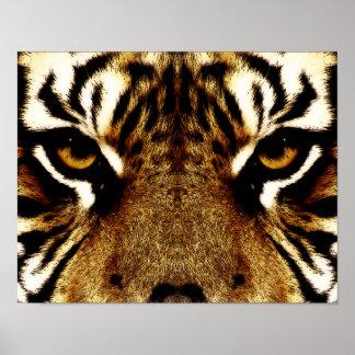 Ojos de un tigre posters