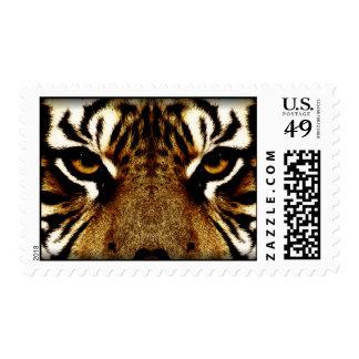 Ojos de un tigre sello