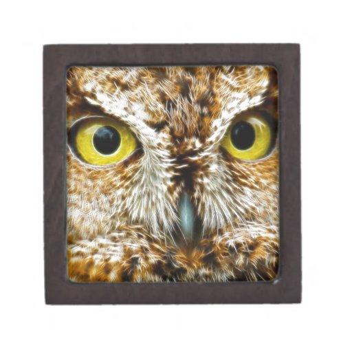 Ojos del búho cajas de regalo de calidad