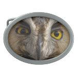 Ojos del búho hebillas cinturón ovales