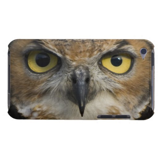 Ojos del búho iPod touch funda