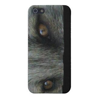 Ojos del Fox ártico de AFE iPhone 5 Carcasa
