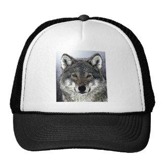 Ojos del lobo gorras de camionero