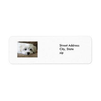 Ojos del perrito etiquetas de remite