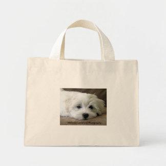 Ojos del perro de perrito bolsa