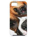 Ojos del perro del boxeador iPhone 5 Case-Mate protectores