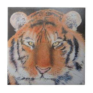 Ojos del tigre azulejo cuadrado pequeño