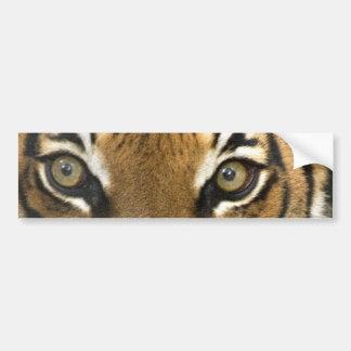 Ojos del tigre pegatina de parachoque