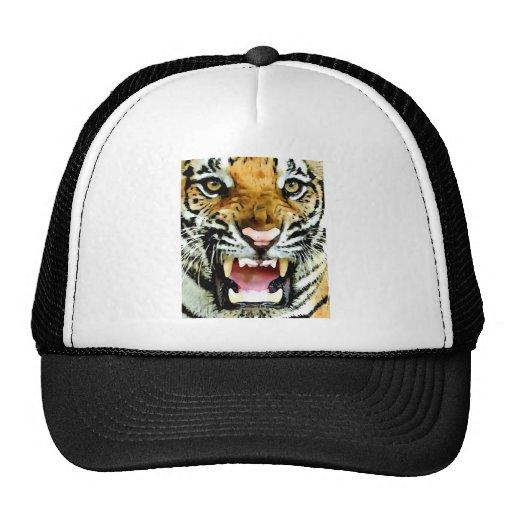 Ojos del tigre gorra