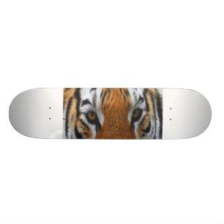 ojos del tigre tablas de patinar