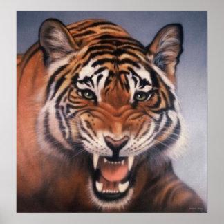 Ojos del tigre póster
