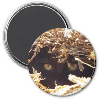 Ojos en la paja del guisante imán redondo 7 cm