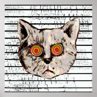 ojos enojados divertidos del espiral del gato póster