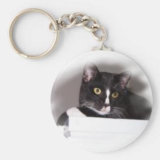 Ojos grandes del amarillo del gato blanco y negro  llavero personalizado
