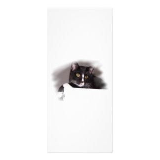 Ojos grandes del amarillo del gato blanco y negro  tarjetas publicitarias personalizadas