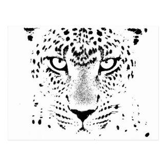 Ojos negros y blancos del leopardo tarjetas postales