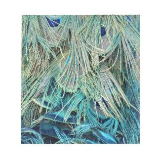 Ojos ocultados plumas espesas del pavo real libretas para notas