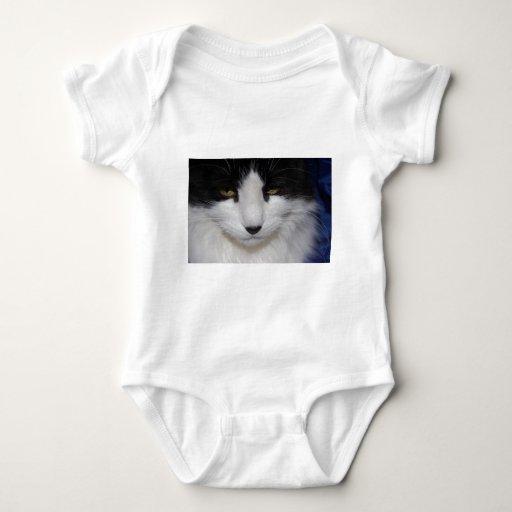 Ojos oscuros del gato body para bebé
